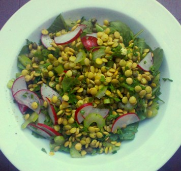 Sprouted Lental Salad