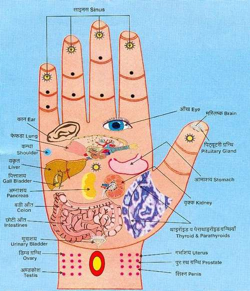 Hand Acupressure Points
